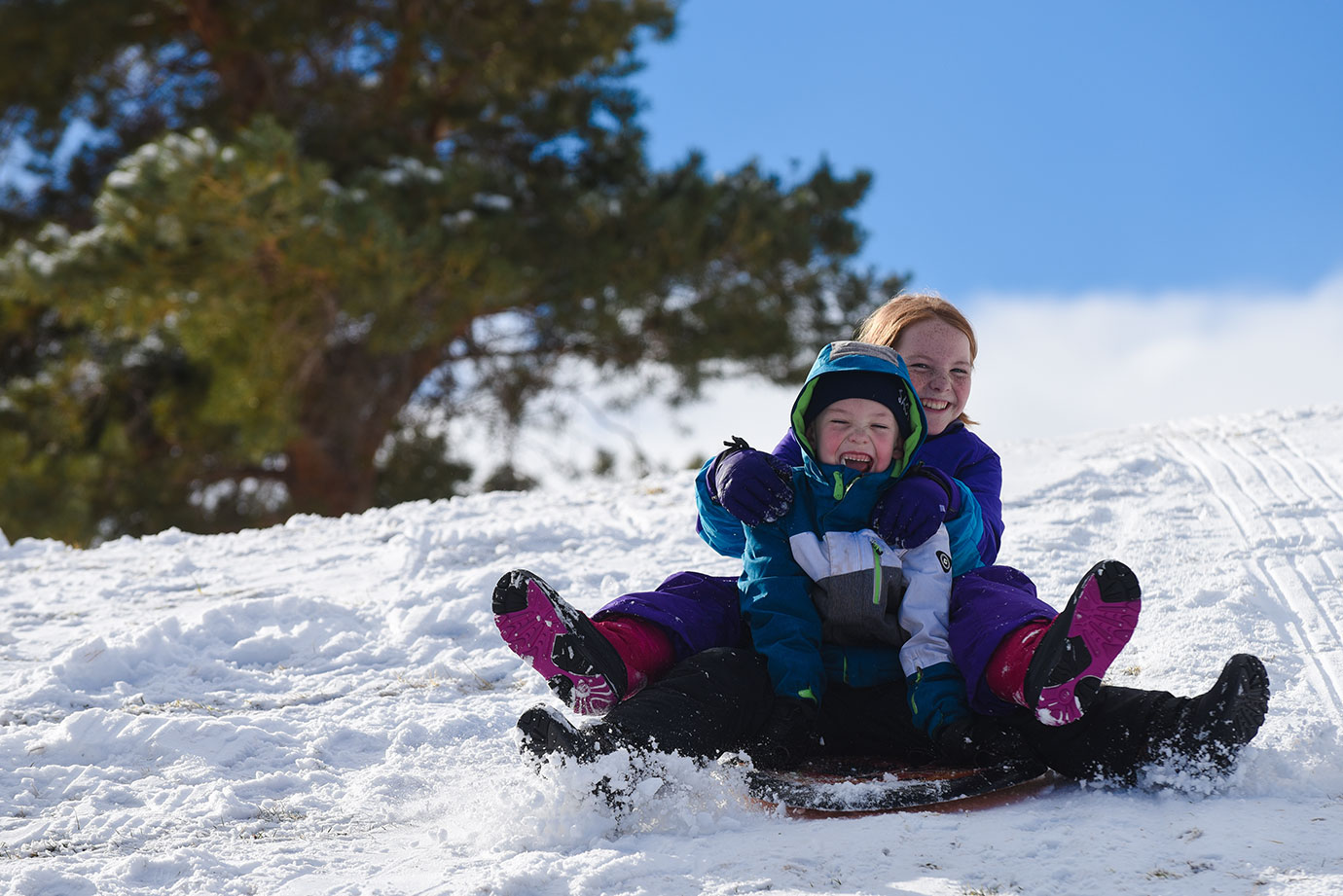 Kids sledding down a snowy hill