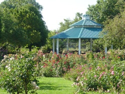 Rose Garden at Idlewild Park