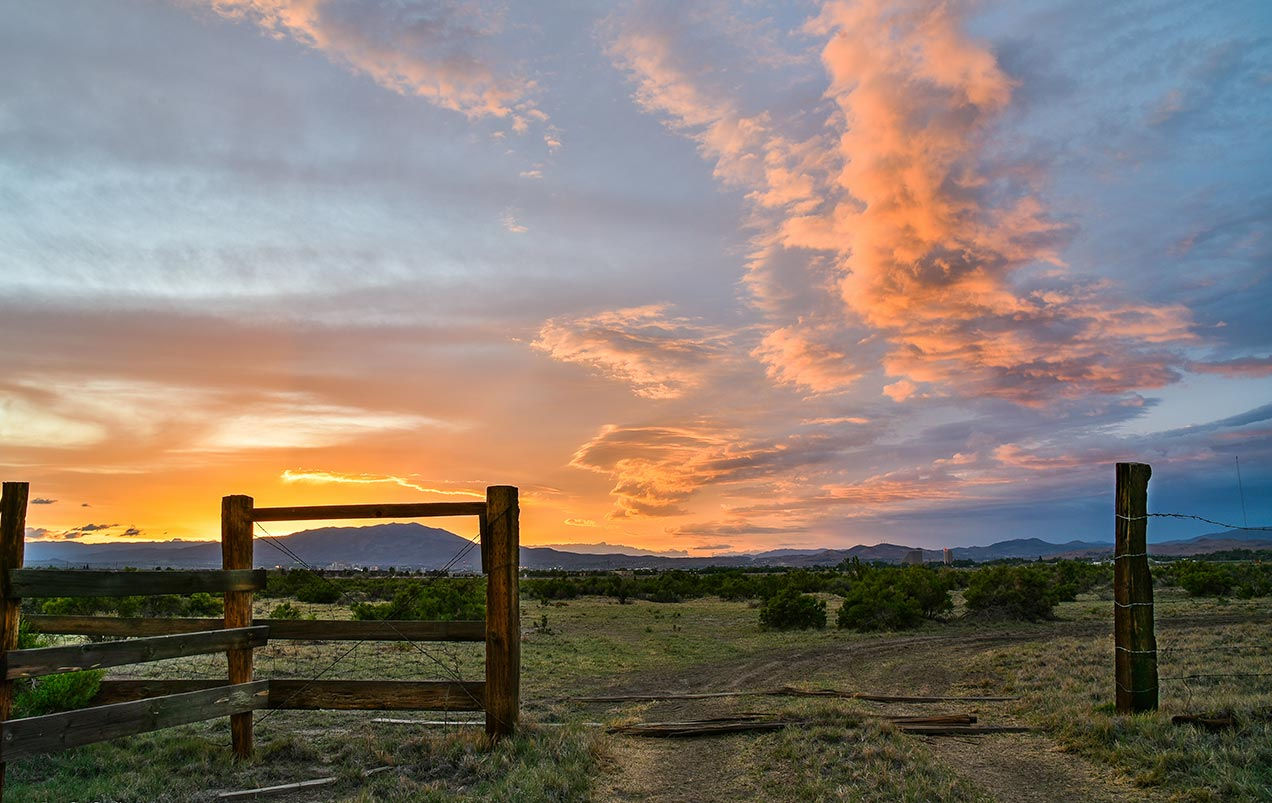 Open field in Hidden Valley in Reno at Sunset