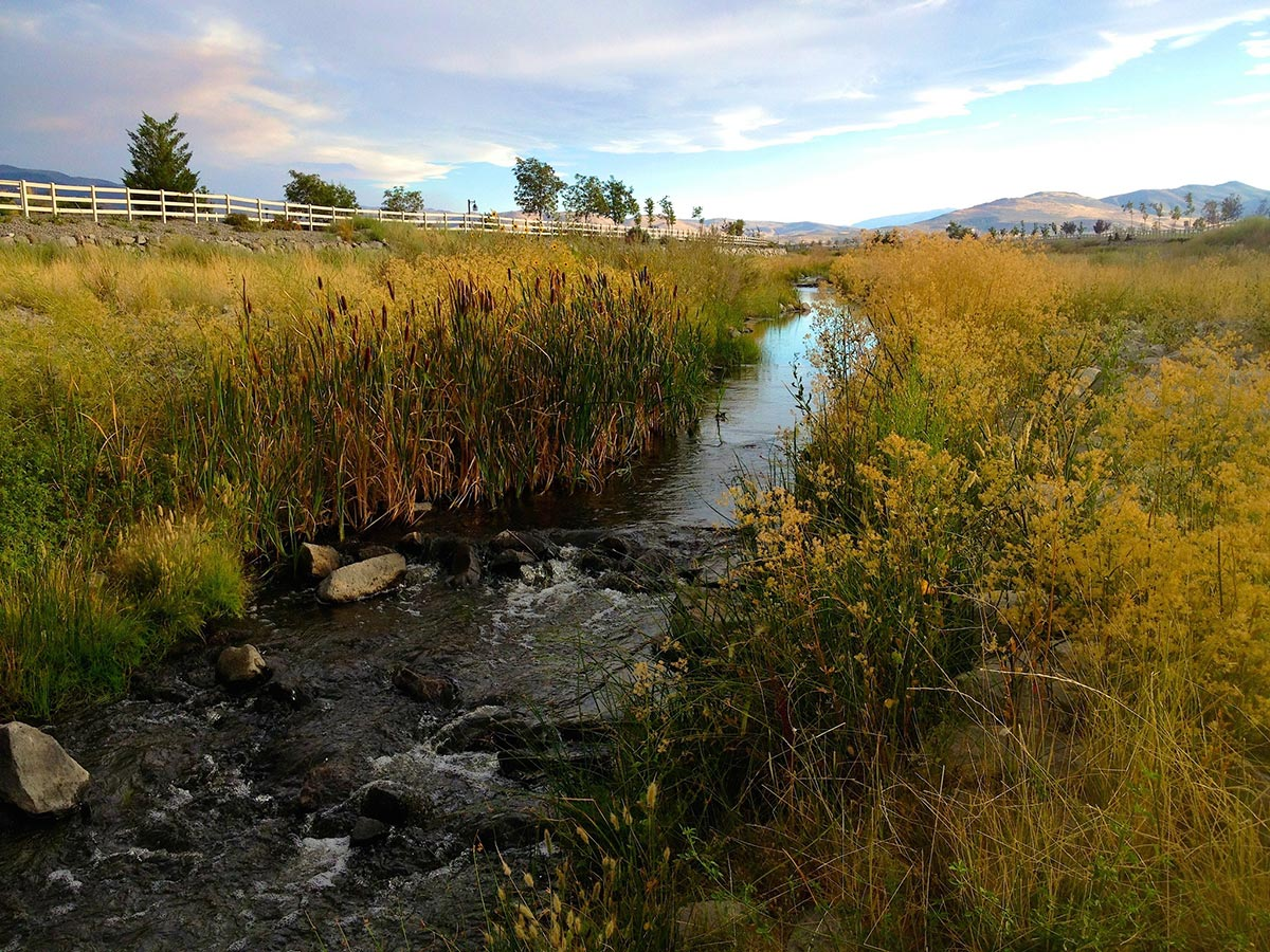 Steamboat Creek in South Meadows in Reno