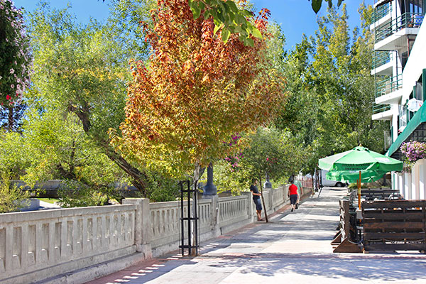 Truckee River Walk with fall color trees
